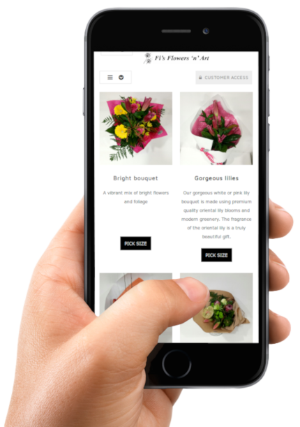 Mobile friendly web apps